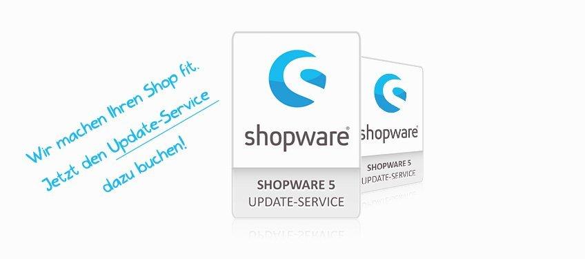 Shopware 5 Update Service